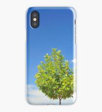 Fine Summer's Day #6 iPhone Case/Skin