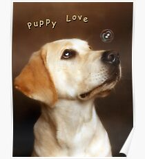 puppylove Poster