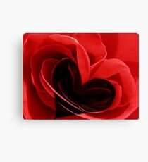 Red rose, black heart Canvas Print