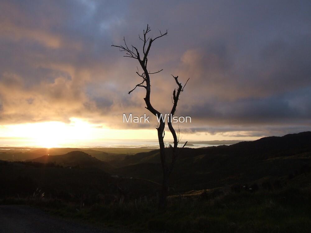 Mt Auckland Sunset by Mark  Wilson