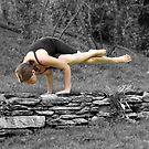 Balance by Jamie Lee