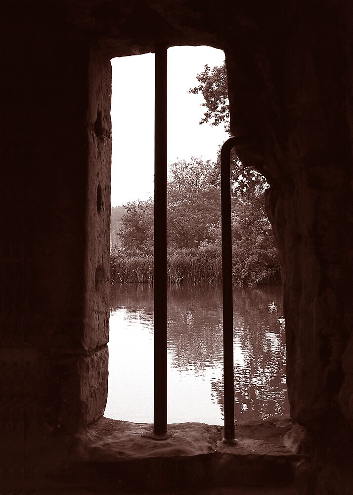 Looking Out Bodium Castle by abby hughes