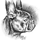 Draw Me Like One of Your French... Bulldogs by Paul-M-W