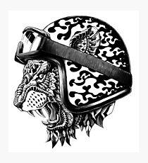 Tiger Helm Photographic Print