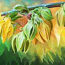 Intoxicaitng Ylang Ylang by Carol  Cavalaris