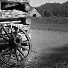 The Farm by David Lee Thompson
