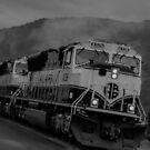 Alaska Railroad  by John  Kapusta