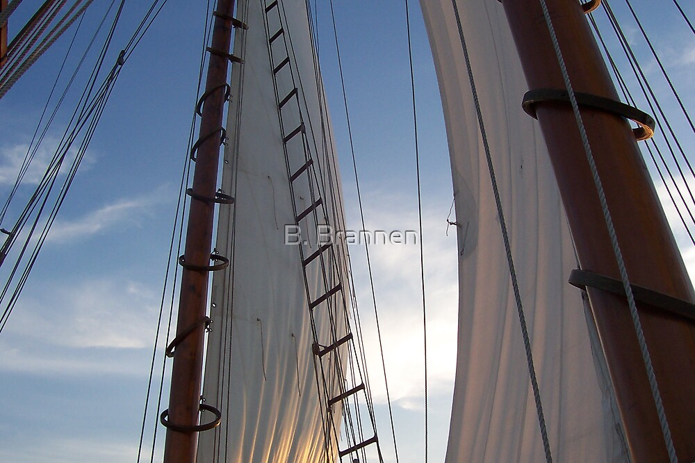 Boat sail at early sunset on ocean by B. Brannen