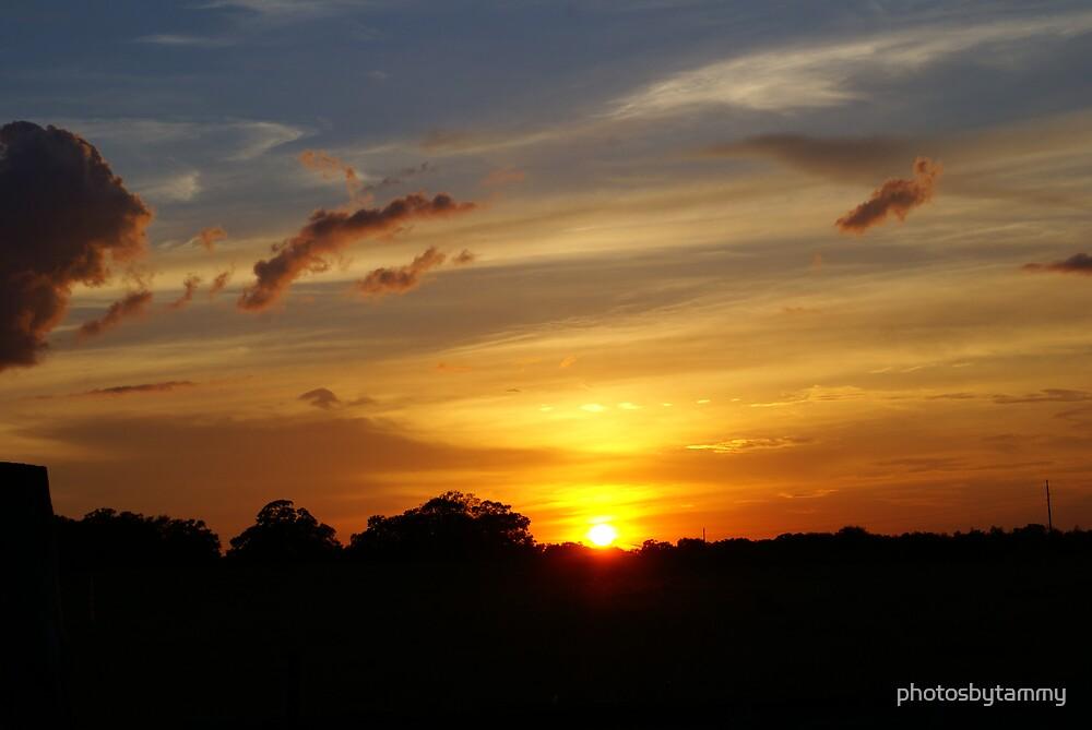 Sandhills Sunset 2 by photosbytammy
