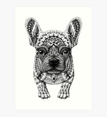 Frenchie (French Bulldog) Art Print