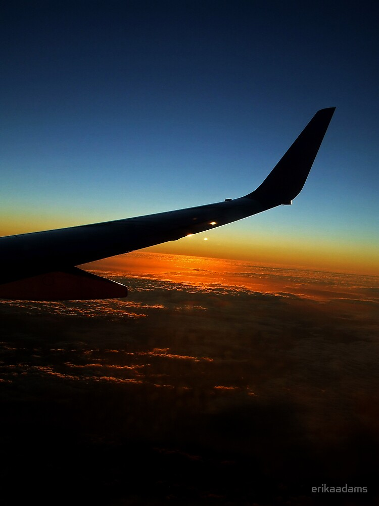 Sunset from a Plane by erikaadams