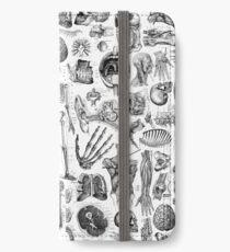 Human Anatomy White Print iPhone Wallet/Case/Skin
