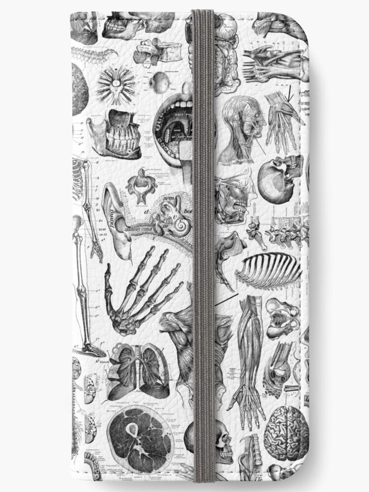 «Anatomía Humana Blanco Print» de adamcampen