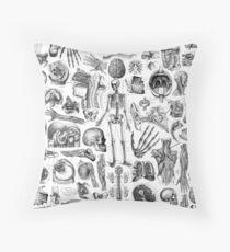 Human Anatomy White Print Throw Pillow