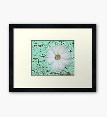 Daisy flower in white and abstract green Framed Print