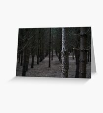 In Formby Woods Greeting Card