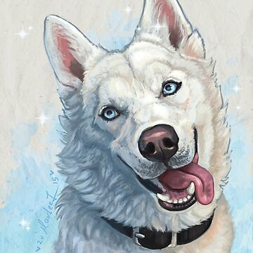 White Husky by strawberriewoof