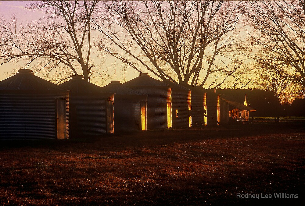 Corn Cribs at Dusk by Rodney Lee Williams