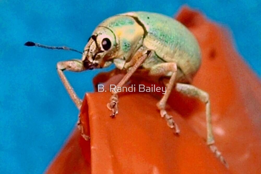 Bug on bag by ♥⊱ B. Randi Bailey