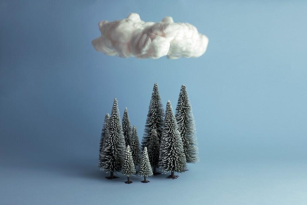 Eine Wolke über dem Wald von josemanuelerre