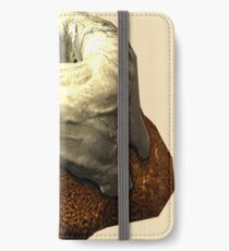 Sweet Roll This! iPhone Wallet/Case/Skin
