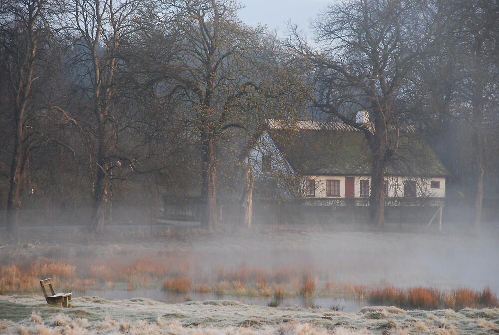 In the Morning by Jane Hansen