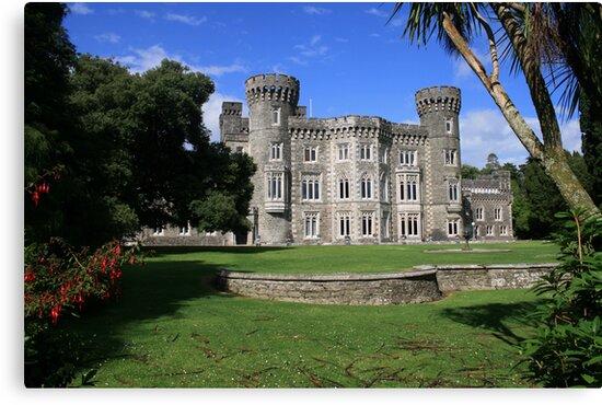 Johnstown Castle view 5 by John Quinn