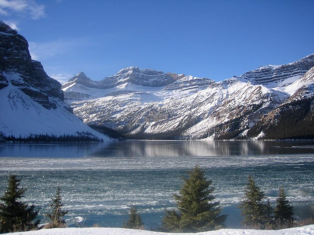 Bow Lake Alberta by Dack