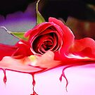 Withering Rose by Nancy