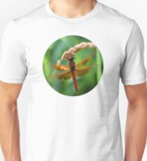 Beautiful Dragonfly T-Shirt