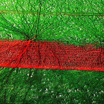 Red road, aerial landscape photograph by rozmcq