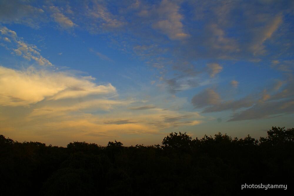 Sky from up high 1 by photosbytammy