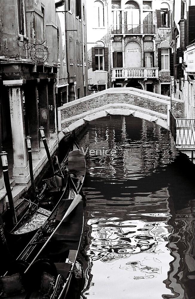 Canals & Bridges by Venice