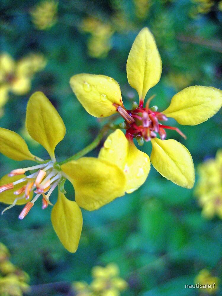 Pretty in Yellow by nauticalelf