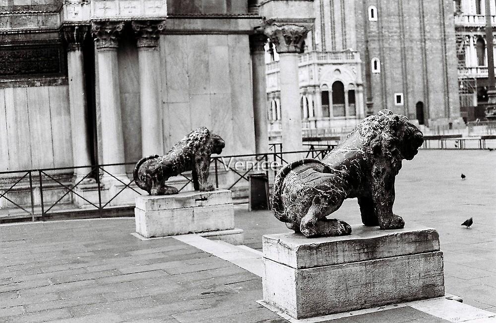 Lions on Gaurd by Venice