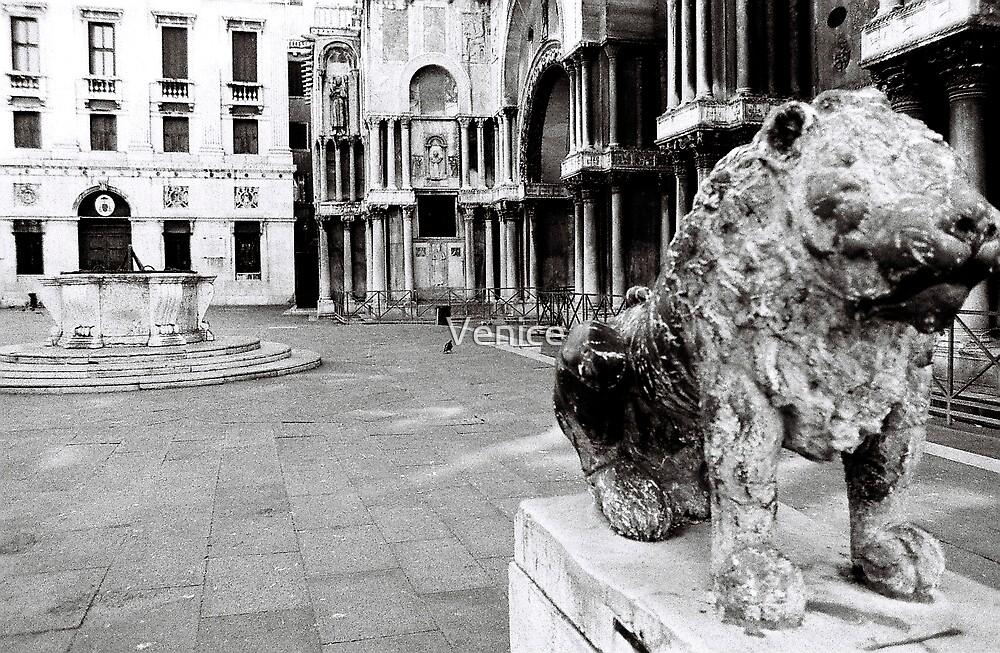 Lion On Guard 2 by Venice