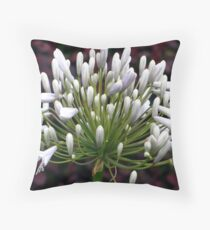 Agapanthus bloom Throw Pillow