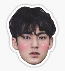 Mingyu Seventeen Sticker