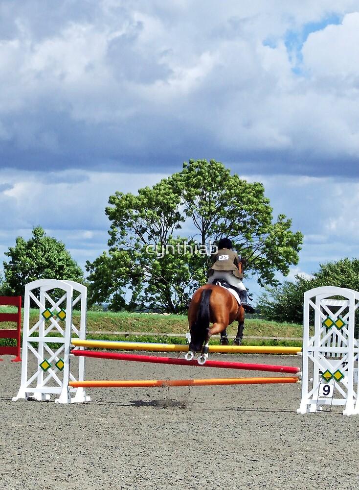 horse jumping by cynthiab