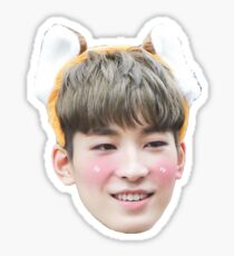 Wonwoo Seventeen Sticker