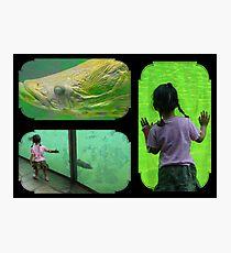 Big fish and the girl... Photographic Print