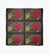 My Love is Like a Red, Red Rose... Scarf