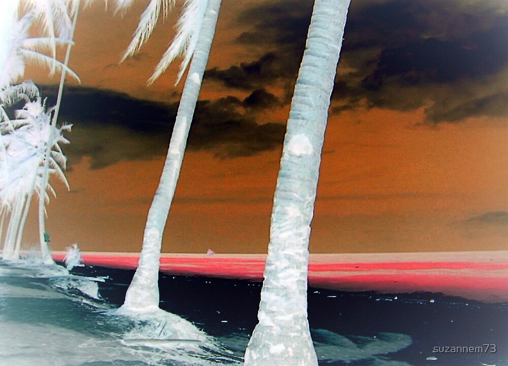 Palms on the Beach by suzannem73