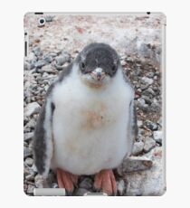 "Gentoo Penguin Chick ~ ""My life's goal....to grow into my feet!"" iPad Case/Skin"
