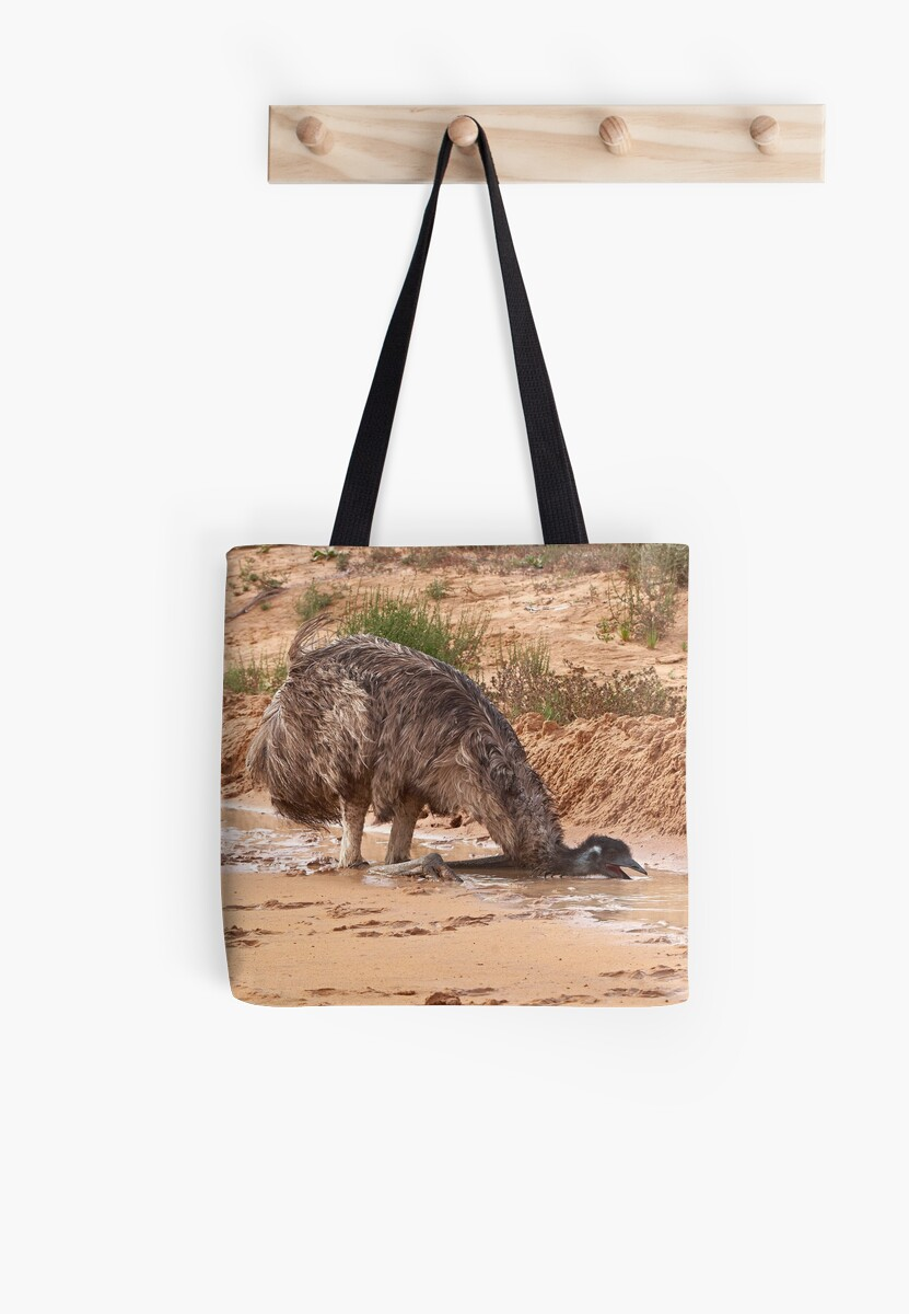 Emu ~ Drink with your back to the Wind by Robert Elliott