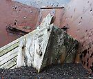 """""""It Rots in Rust""""  by Robert Elliott"""