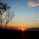 Pardoo Station Sunset by myraj