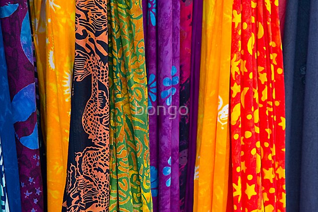 Fabric of Color by bongo