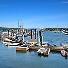 Nanaimo BC Harbour by AnnDixon
