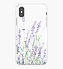 purple lavender  iPhone Case/Skin